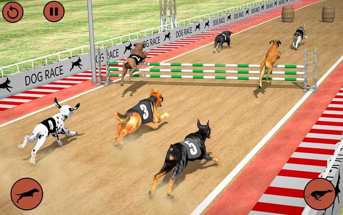 giochi di cani virtuali